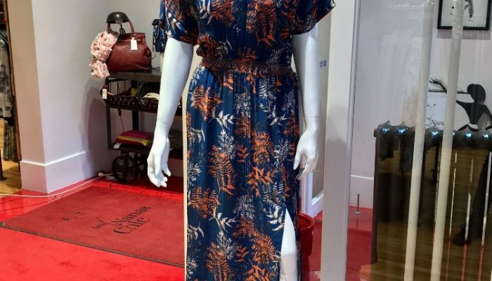 Les Nanas chic robe longue 2020